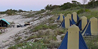 Cygnet Bay Beach Camp - Tourer Style Tents