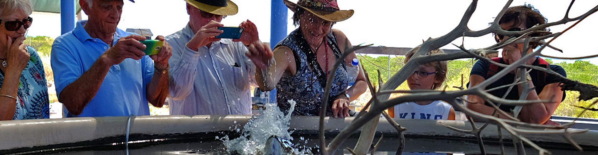 One Arm Point Dampier Peninsula Aquaculture Hatchery