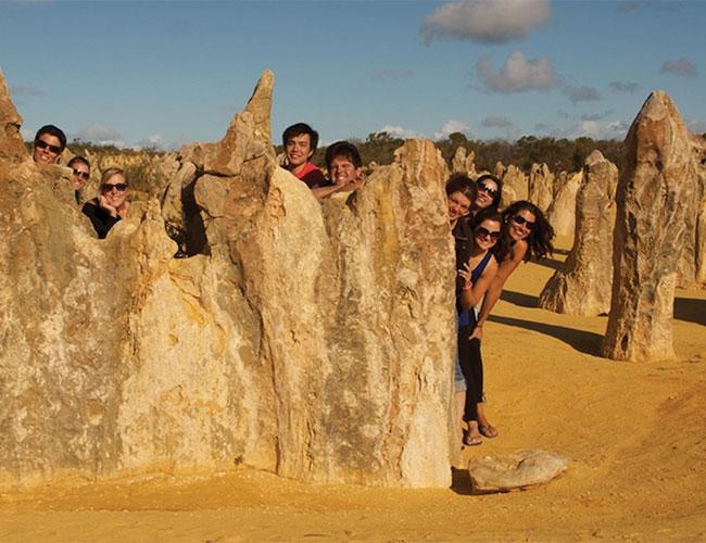 Pinnacles, limestone formations Nambung National Park