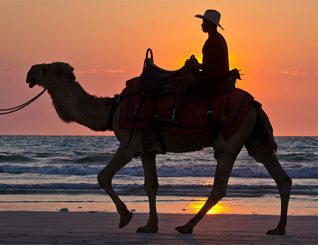 Sunset camel ride Broome